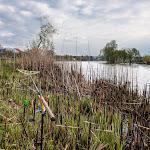 20140417_Fishing_Shpaniv_008.jpg