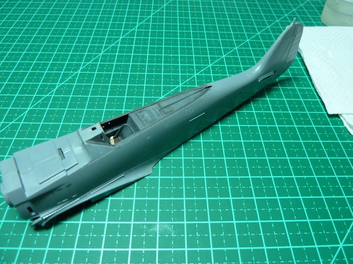 FINALIZADO 24/6 - Focke Wulf Fw 190 A-8 Tamiya 1:48 P1040701