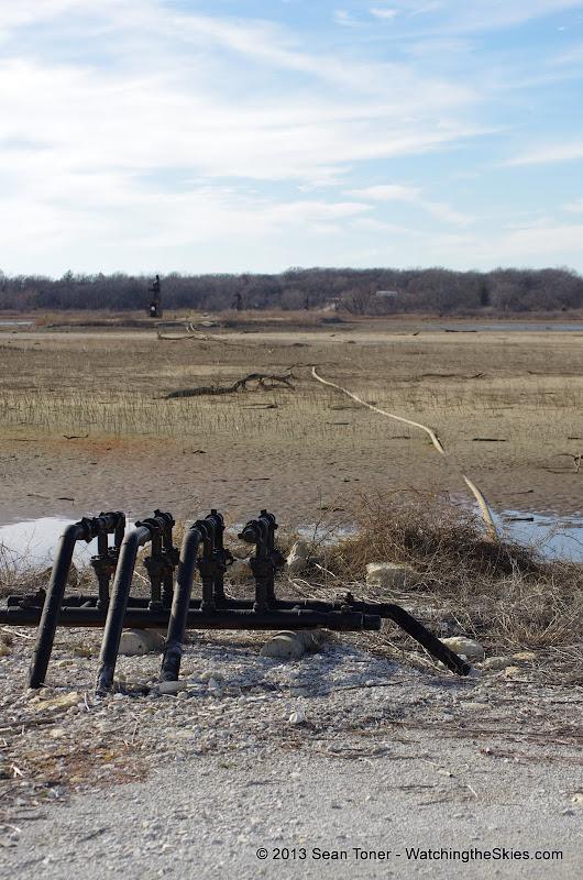 01-19-13 Hagerman Wildlife Preserve and Denison Dam - IMGP4093.JPG