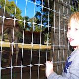 Blessington Farms - 116_4993.JPG