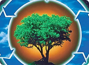 Финансирование мероприятий по охране окружающей среды увеличится