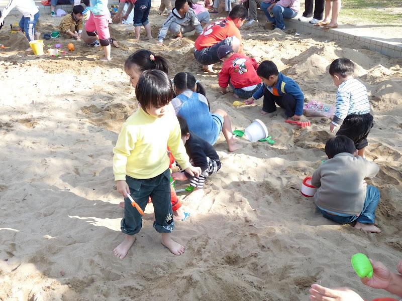 TAIWAN ,pas loin de Taipei Taipingshan, puis Taipei Daan park - P1030995.JPG