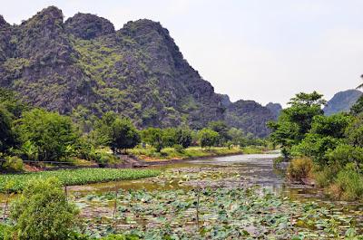 The Ngô Đồng River