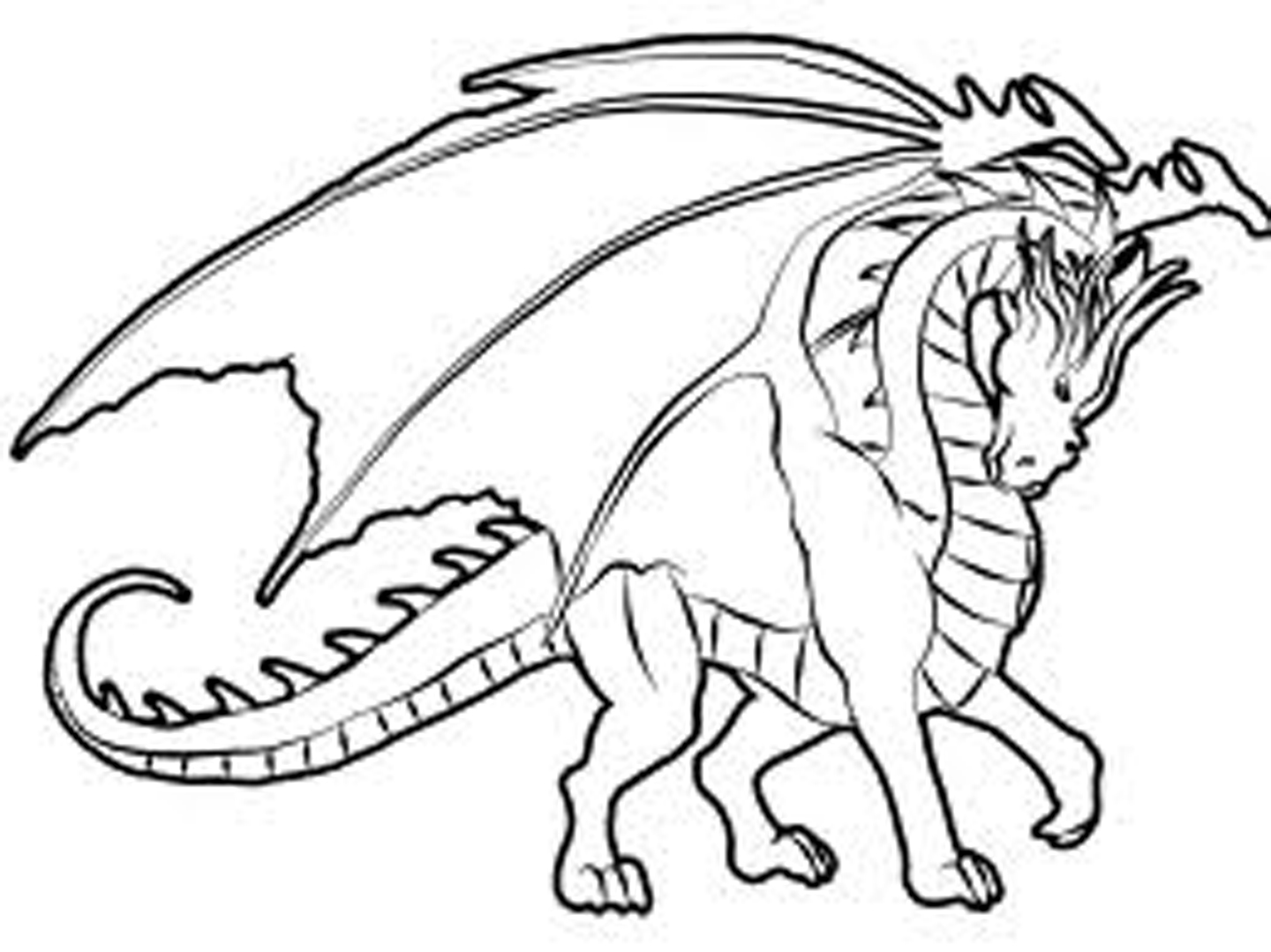 - Free Animal Coloring Pages Kids