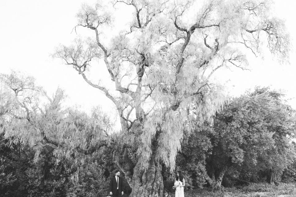Grace and Alfonso wedding Clouds Estate Stellenbosch South Africa shot by dna photographers 703.jpg