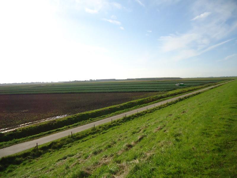 110/80/55/30km: Tour de Goere-Overflakkee;NL: 24-25/08/2012 DSC01431