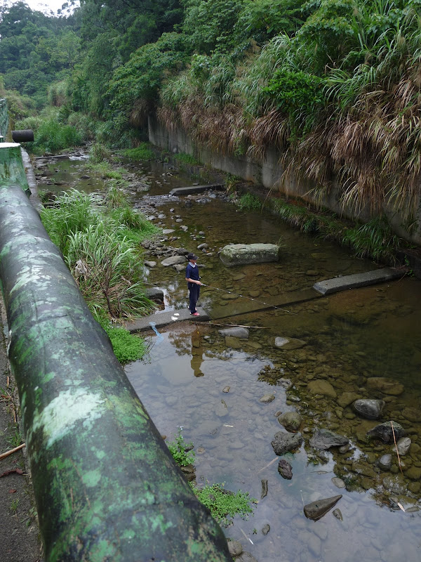 TAIWAN.Shen Keng , dans la banlieue de Taipei - P1100042.JPG