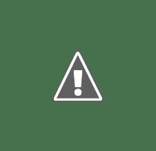 Эхолоты для рыбалки отзывы.  Рыбопоисковый эхолот для рыбалки  Furuno FCV-291 обзор.