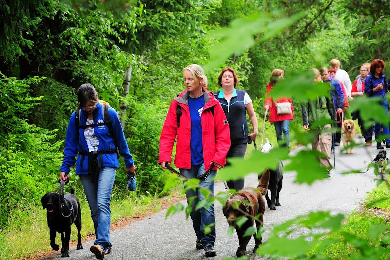 20130623 Erlebnisgruppe in Steinberger See (von Uwe Look) - DSC_3690.JPG