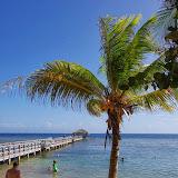 01-01-14 Western Caribbean Cruise - Day 4 - Roatan, Honduras - IMGP0907.JPG