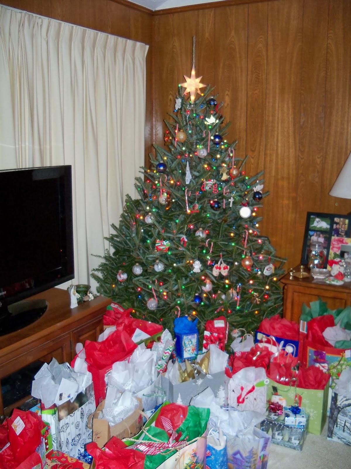 Christmas 2013 - 115_9339.JPG