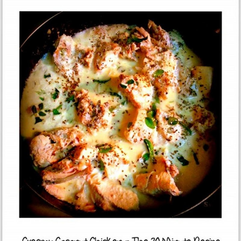 Foodies Files– The 20 Minutes Creamy Coconut Chicken