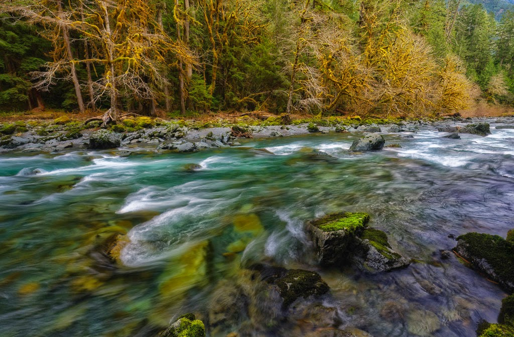 """Skokomish River"" by Roy Kropp - 1st Place Print M"