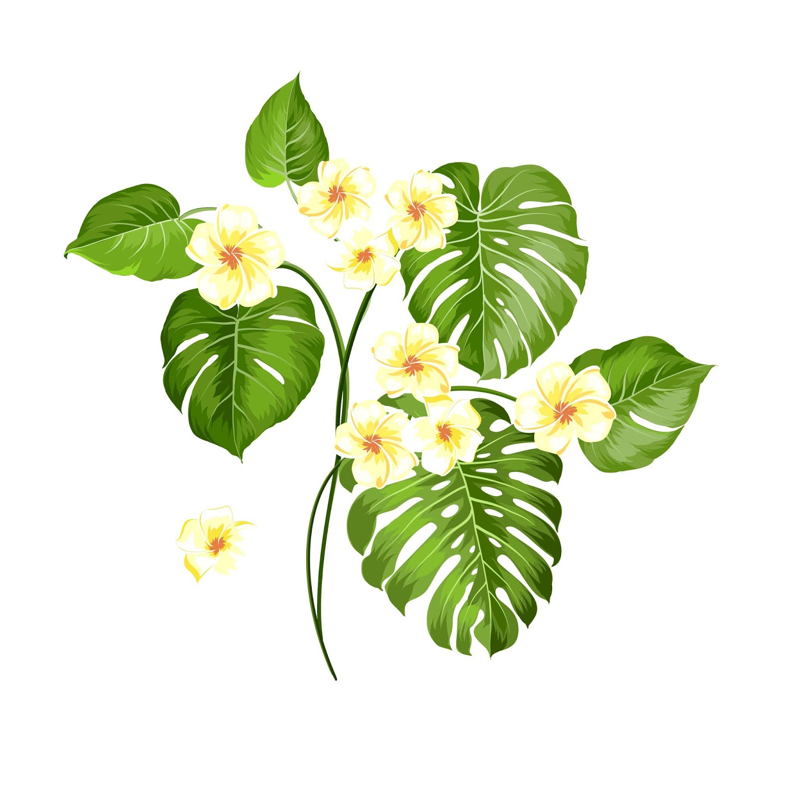 Tropical Flower Palm White Background Vector Illustration Free Download Vector CDR, AI, EPS and PNG Formats