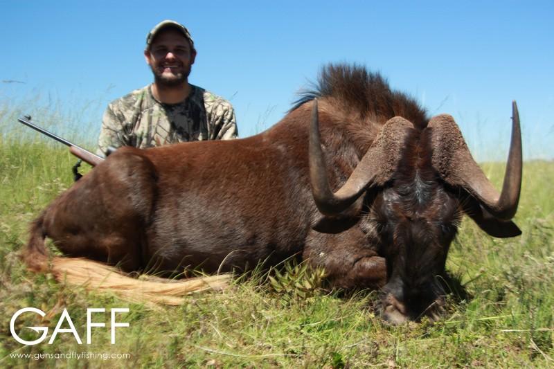 hunting-highveld-africa-dullstroom-blesbuck-blackwildebeest (5).jpg