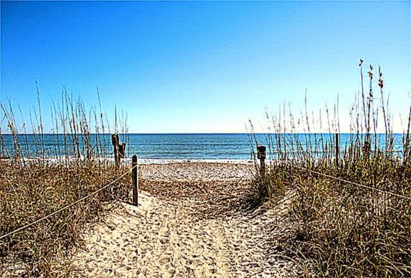 Edisto Beach State Park   Edisto South Carolina SC
