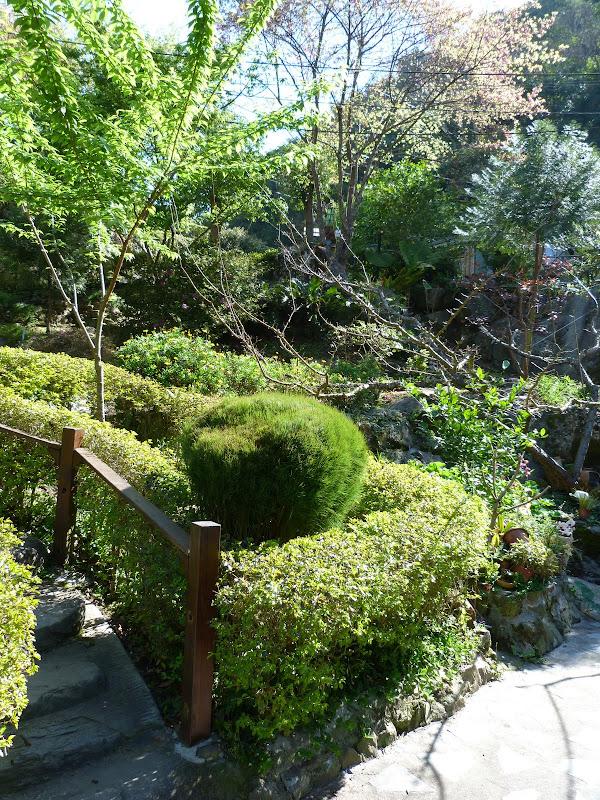 TAIWAN Chia yi, Taichung et quelque part ? au  au sud de Taipei - P1000297.JPG
