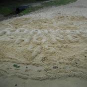 Roaming Shores 45th Anniversary