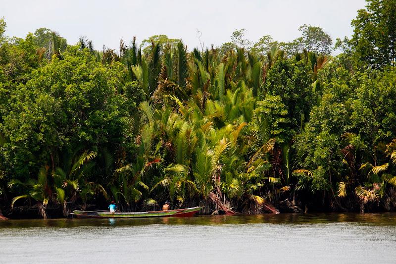 Una barca en las orillas de la jungla de Borneo