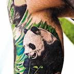 panda gigante.jpg