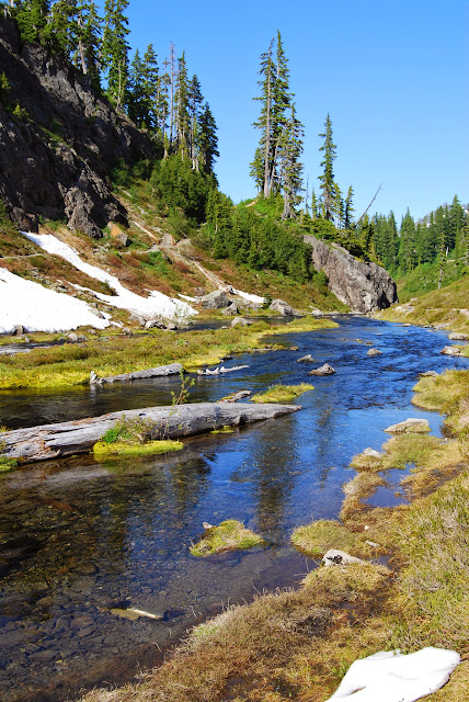 Heather Meadows in July / Credit: Bellingham Whatcom County Tourism