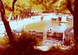 Photo: Uimapaikka Odessassa
