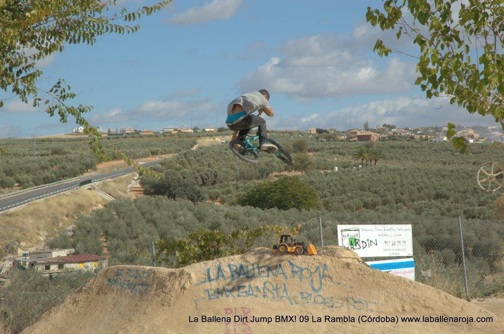 Ballena Dirt Jump BMX 2009 - BMX_09_0006.jpg
