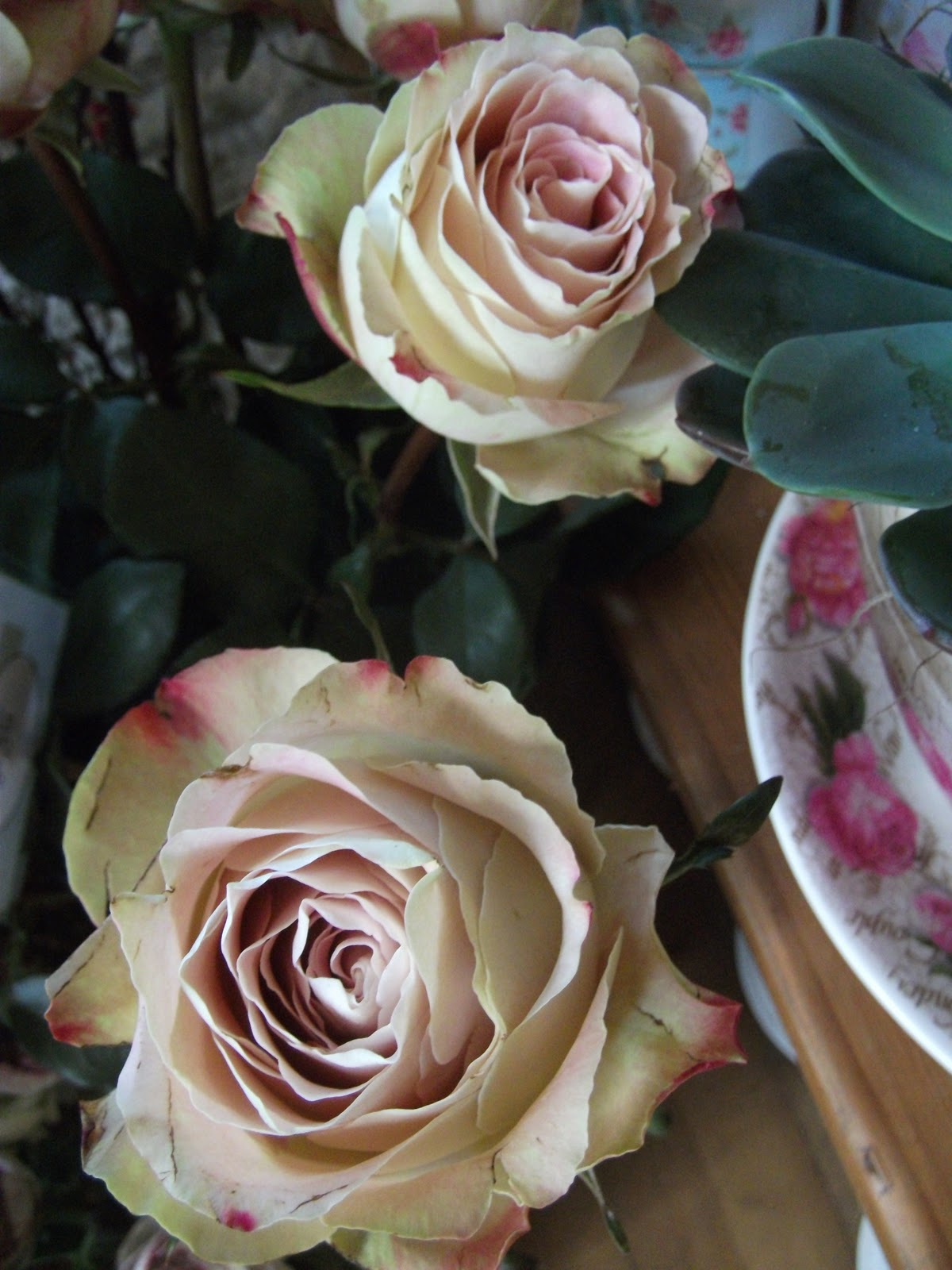 Warning This Shop Contains Gorgeous Blooms And Delightful Scents