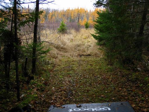 North end of Bullhead lake trail