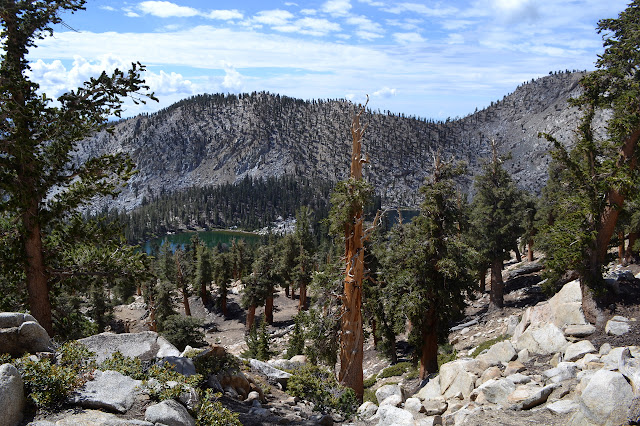 Coyote Lakes