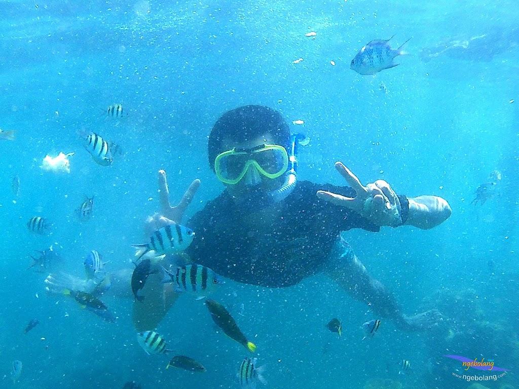 pulau harapan, 29-30 agustus 2015 SJCam 17