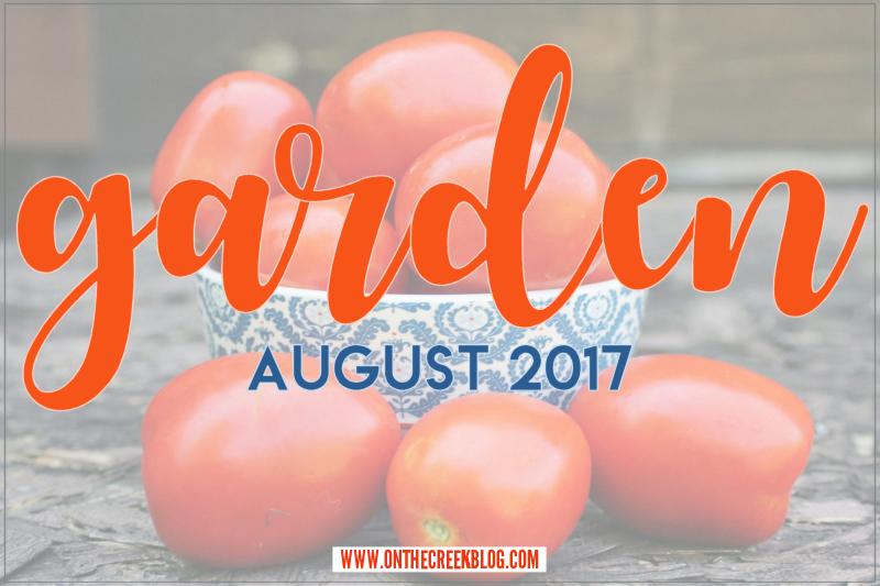 Garden | August 2017