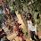 Neethu Achar's profile photo