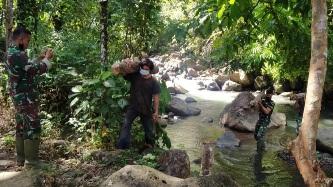 Rajin Menyelesaikan Pembuatan Kayu Bakar