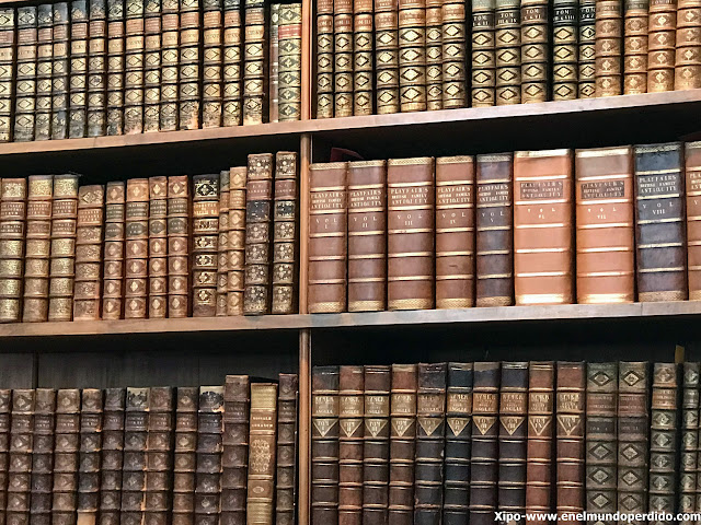 estanterias-biblioteca-nacional-de-austria-viena.JPG