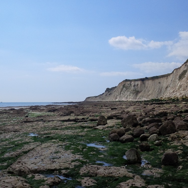 low tide and cliffs
