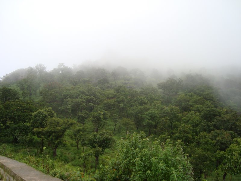 Photo: Gopalaswamy hills