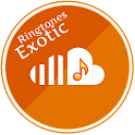 Exotic Ringtones icon
