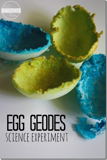 Egg Geodes Science Experiment: Simple Science FUN! Great science project for preschool, kindergarten, 1st grade, 2nd grade, and 3rd grade kids. Perfect for at home, in the classroom, summer learning, and homeschool.