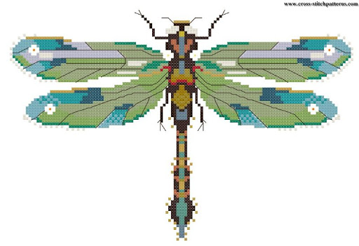 emerald dragonfly chart