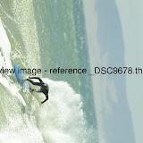 _DSC9678.thumb.jpg