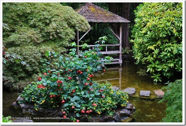 160906_Butchart_Gardens_0138