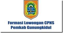 Formasi-Lowongan-CPNS-Pemkab-Gunungkidul-Yogyakarta cpns 2016