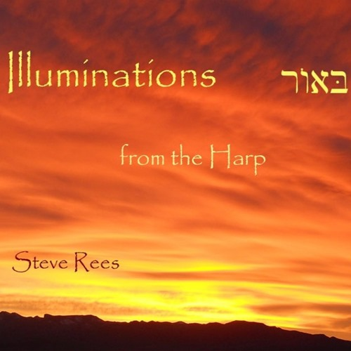 steve rees - illuminations