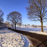 Winter - Winter-004.jpg