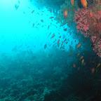 20060408-16 duik 3 sfeerfoto.JPG