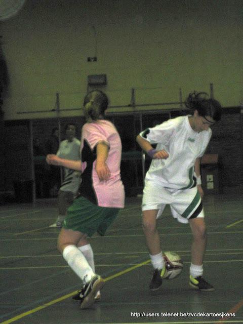 Ballen aan de kant -16 feb 2010 - fiona.jpg
