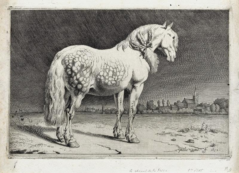 Paulus Potter - The Frisian Horse