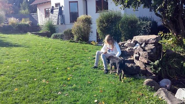 Bella Billy Hope i Ahil u novom domu - 12077460_1027156850648415_2005624899_n.jpg