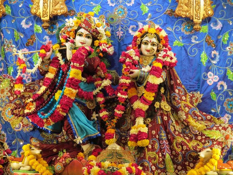 ISKCON Vallabh vidhyanagar Deity Darshan 07 jan 2017 (1)